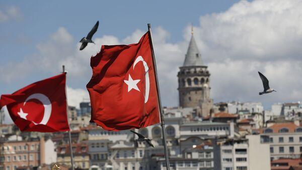 Turkish flags in Istanbul - Sputnik International