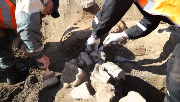 Archeologists  - Sputnik International