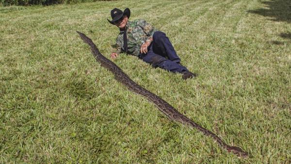 Massive 16-Foot Burmese Python, Dozens of Eggs Found Under US Home   - Sputnik International