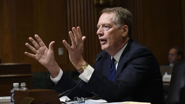 United States Trade Representative Robert Lighthizer testifies before the Senate Finance Committee on Capitol Hill in Washington, Tuesday, June 18, 2019 - Sputnik International