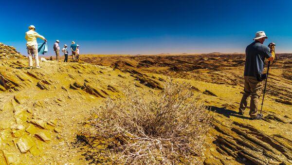 The Eastern Carpcliff area in Namibia. - Sputnik International