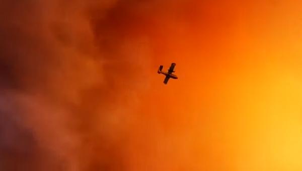 Wildfires in Greece - Sputnik International