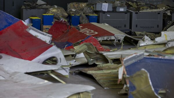 In this March 3, 2015 file photo parts of the wreckage of the Malaysia Airlines Flight 17 are displayed in a hangar at Gilze-Rijen airbase, Netherlands. - Sputnik International