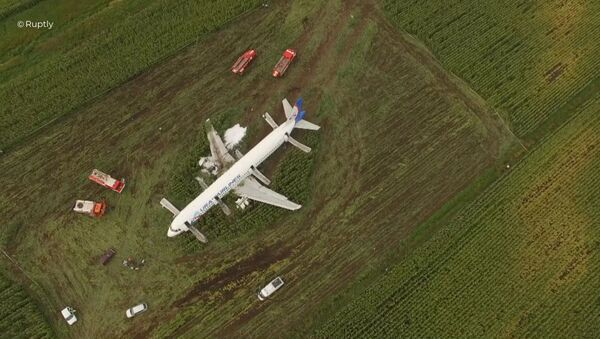 A321 emergency landing in the Moscow region - Sputnik International