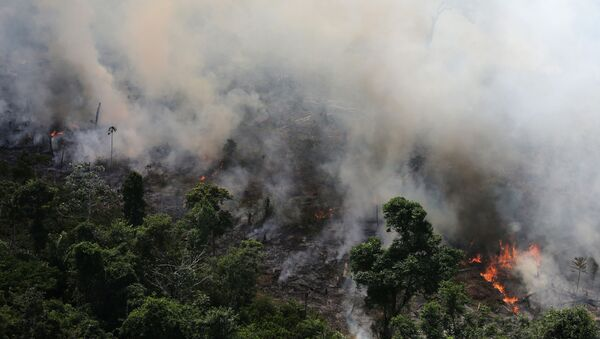 An aerial view of a tract of Amazon jungle burning as it is being cleared by loggers and farmers near the city of Novo Progresso, Para state, Brazil September 23, 2013. Picture taken September 23, 2013.   - Sputnik International