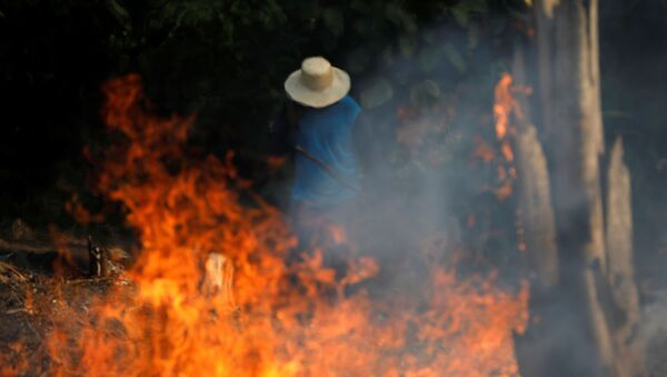 A man works in a burning tract of Amazon jungle as it is being cleared by loggers and farmers in Iranduba, Amazonas state, Brazil August 20, 2019.  - Sputnik International