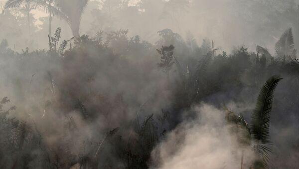 Smoke billows during a fire in an area of the Amazon rainforest near Humaita, Amazonas State, Brazil, Brazil August 14, 2019. - Sputnik International