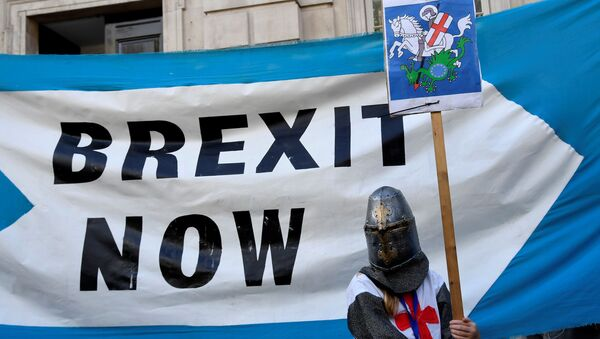 A pro-Brexit supporter holds a placard outside Cabinet Office in London, Britain August 29, 2019 - Sputnik International