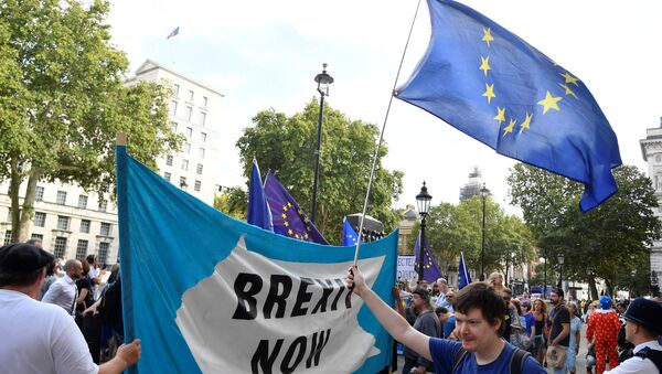 Pro-Brexit and anti-Brexit campaigners protest outside the Cabinet Office in London, Britain August 29, 2019 - Sputnik International