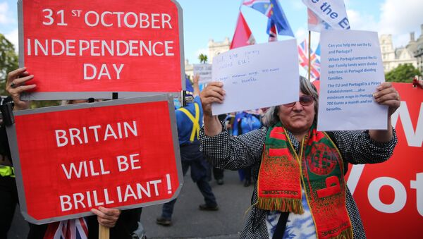 A pro-Brexit activist holds a placard as she protests outside the Houses of Parliament in central London on September 3, 2019. - Sputnik International