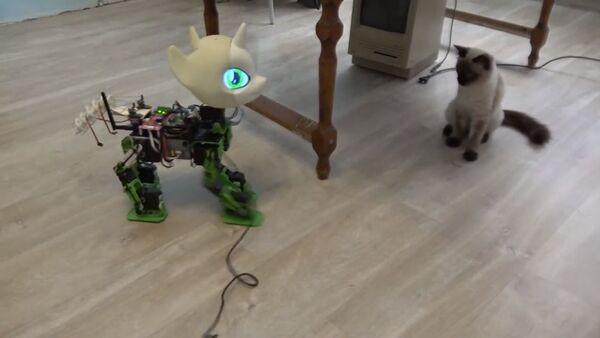 Russian-made My Little Pony Robot 'Sweetie Bot' - Sputnik International