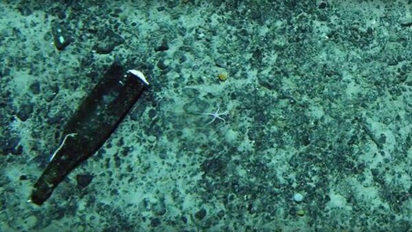 Antarctica shock: Scientists discover evidence of 'human intruders' below ice  - Sputnik International