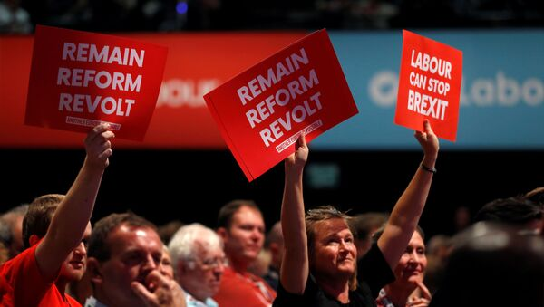Labour party supporters hold anti-Brexit signs during the Labour party annual conference in Brighton, Britain September 23, 2019.   - Sputnik International