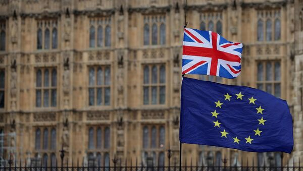 In this file photo taken on 23 January 2019, an anti-Brexit activist waves a Union Jack and a European Union flag during a demonstration outside the Houses of Parliament in central London - Sputnik International