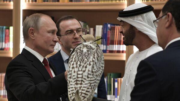 Russian President Vladimir Putin presents gyrfalcon to Abu Dhabi Crown Prince, 15 October 2019.  - Sputnik International