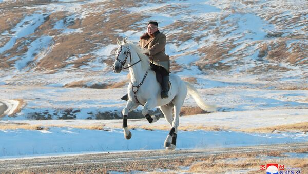 North Korean leader Kim Jong Un rides a horse during snowfall in Mount Paektu in this image released by North Korea's Korean Central News Agency (KCNA) on October 16, 2019 - Sputnik International