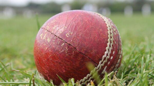 Cricket ball - Sputnik International