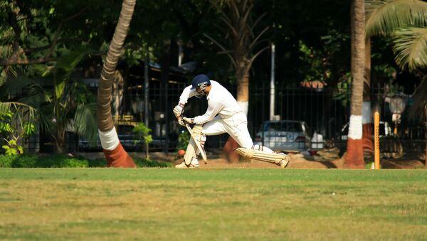 Cricket  - Sputnik International