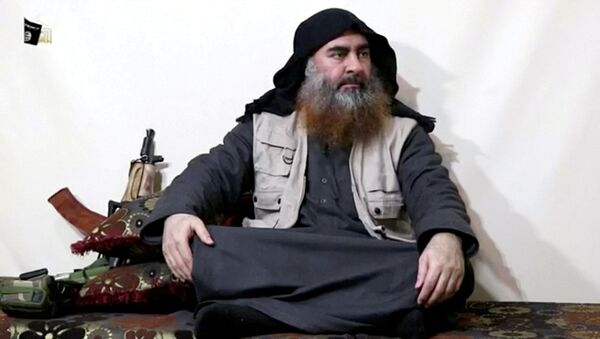 A bearded man with Islamic State leader Abu Bakr al-Baghdadi's appearance speaks in this screen grab taken from video released on April 29, 2019. Islamic State Group/Al Furqan Media Network/ - Sputnik International