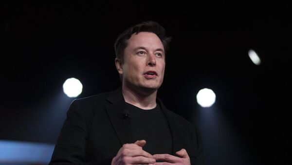Tesla CEO Elon Musk - Sputnik International
