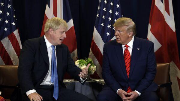 President Donald Trump meets with British Prime Minister Boris Johnson - Sputnik International