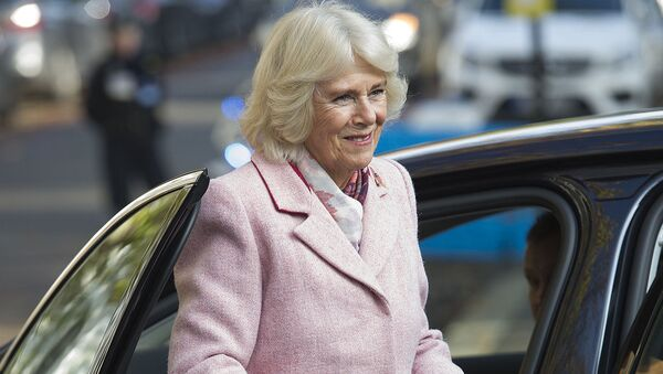 Britain's Camilla, Duchess of Cornwall reacts during a visit to Swiss Cottage Farmers Market in London on November 6, 2019 - Sputnik International