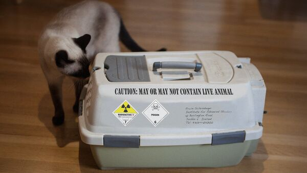 Schrödinger's cat carrier - Sputnik International