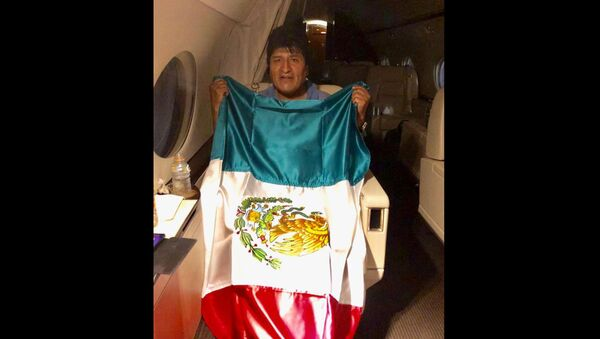 This photo released by by Mexico's Foreign Minister Marcelo Ebrard shows Bolivia's former President Evo Morales holding a Mexican flag aboard a Mexican Air Force aircraft, 11 November 2019 - Sputnik International
