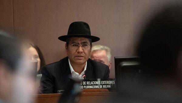 Bolivian Foreign Minister Diego Pary - Sputnik International