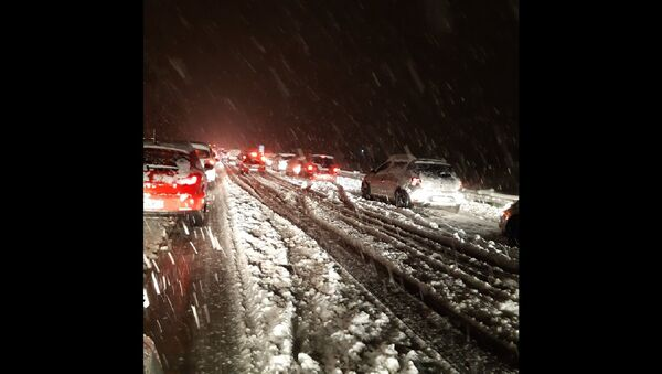 Snowfall in Eastern France - Sputnik International