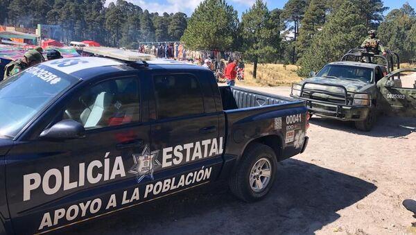 Mexican police in the Nevado de Toluca national park - Sputnik International