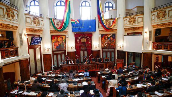 Congress session in La Paz, Bolivia - Sputnik International