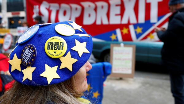Anti-Brexit badges on a protester's beret are pictured during a demonstration in front of the British embassy in Brussels, Belgium December 5, 2019. - Sputnik International