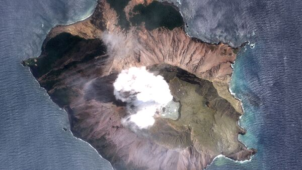 A satellite imagery of the White Island volcano, also known as Whakaari, taken on December 11, 2019 following its eruption in New Zealand - Sputnik International