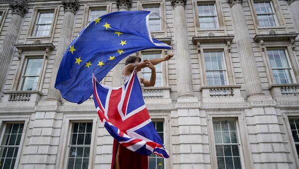 An anti-Brexit demonstrator whirls an EU and Union Flag during a demonstration against the British government's move to suspend parliament in the final weeks before Brexit outside Downing Street in London on August 31, 2019. - Sputnik International