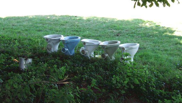 Five toilet bowls - Sputnik International