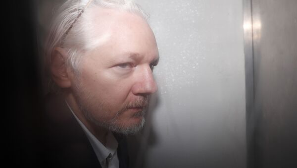 WikiLeaks founder Julian Assange is seen in a prison van traveling to Westminster Magistrates Court in London, Friday, Dec. 20, 2019. Assange is expected to appear in person before Westminster Magistrates in a private hearing related to a Spanish criminal case about alleged surveillance at the Ecuador embassy - Sputnik International