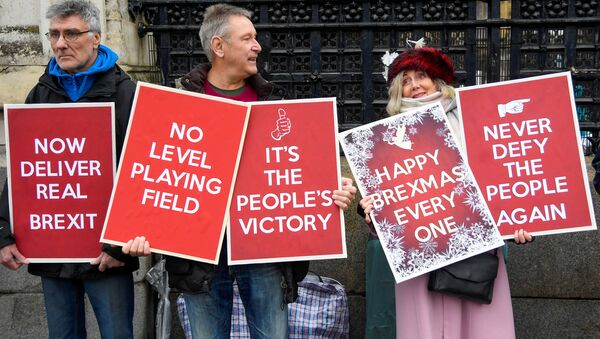 Pro-Brexit demonstrators hold signs outside the Houses of Parliament in London, Britain, December 17, 2019 - Sputnik International