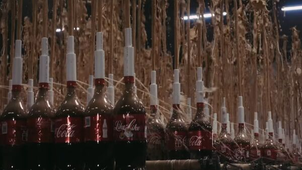 1000 FOUNTAIN OF COLA AND MENTHOS AT THE SAME TIME - Sputnik International