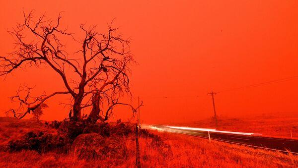 The Snowy Valley bushfire on the outskirts of Cooma - Sputnik International