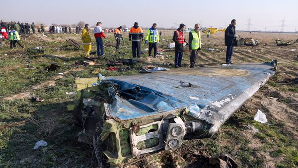 Rescue teams are seen on January 8, 2020 at the scene of a Ukrainian airliner that crashed shortly after take-off near Imam Khomeini airport in the Iranian capital Tehran - Sputnik International