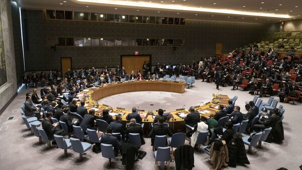 A general view of the Security Council meeting on maintenance of international peace and security and upholding the United Nations Charter - Sputnik International