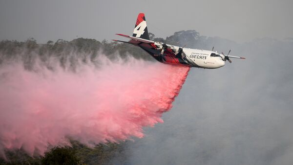 The NSW Rural Fire Service Large Air Tanker (LAT) drops fire retardant on the Morton Fire burning in bushland close to homes at Penrose in the NSW Southern Highlands, south of Sydney, Australia, January 10, 2020. - Sputnik International