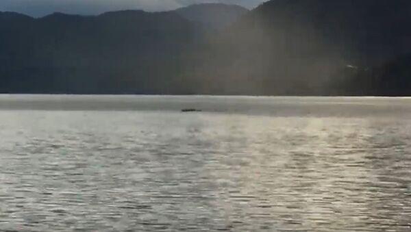 Ogopogo lake monster reportedly spotted in Canada's British Columbia - Sputnik International