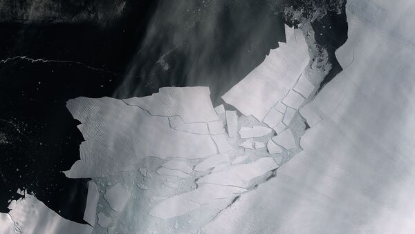 The Pine Island Glacier recently spawned an iceberg over 300 sq km that very quickly shattered into pieces. This almost cloud-free image, captured on 11 February by the Copernicus Sentinel-2 mission, shows the freshly broken bergs in detail. - Sputnik International