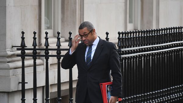 Britain's Minister without Portfolio and Conservative Party Chairman James Cleverly arrives for a meeting of the cabinet at 10 Downing Street in London on February 11, 2020 - Sputnik International