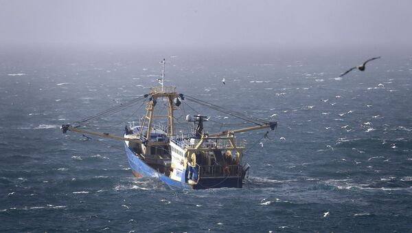 A fishing boat at work in the English Channel, off the southern coast of England, 1 February 2020 - Sputnik International
