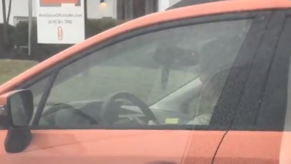 Needle and Red Light: Woman Caught Knitting While Driving - Sputnik International