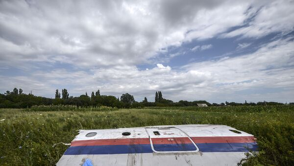 In this file photo taken on 20 July 2014 a piece of the wreckage of the Malaysia Airlines flight MH17 is pictured in a field near the village of Grabove, in the region of Donetsk. - Sputnik International