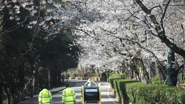 Security personnel walk next to a 5G enabled autonomous vehicle, installed with a camera filming blooming cherry blossoms for an online live-streaming session, inside the closed Wuhan University, in Wuhan, China, March 17, 2020 - Sputnik International